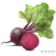 Буряк Фрукти та овочі